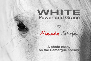 WHITE_Power and Grace thumbnail