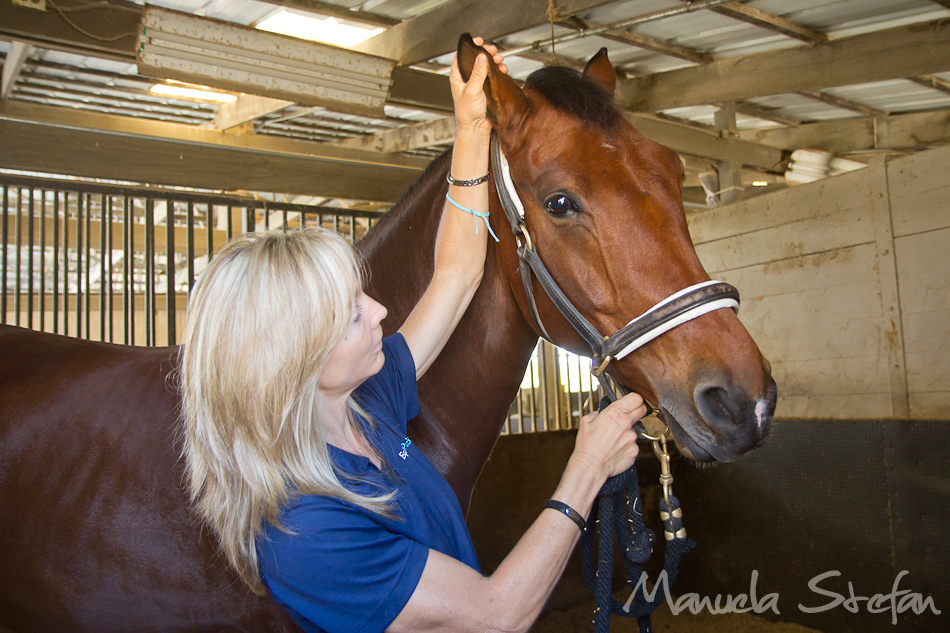 Jane Wesson of Equine Pacifica photo