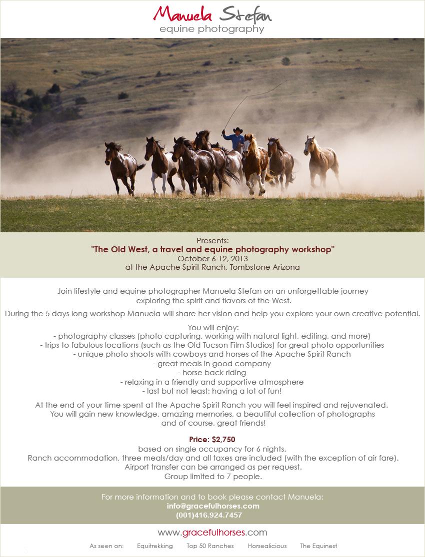Gracefulhorses Workshop promo FB