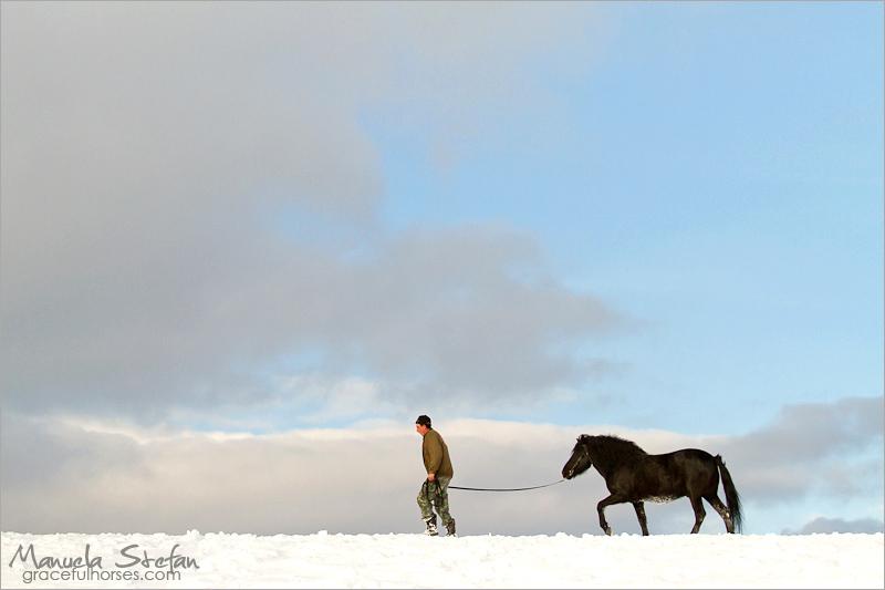 Man and Hutul stallion