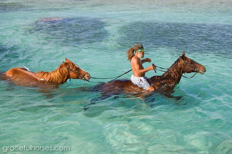 Braco Stables Jamaica ocean photos