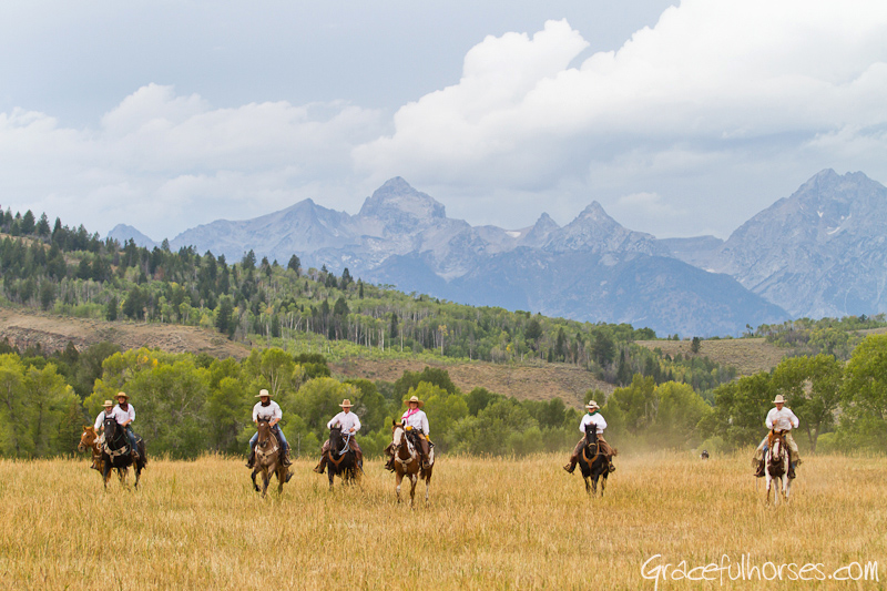 Wranglers riding at the Gro Ventre River Ranch