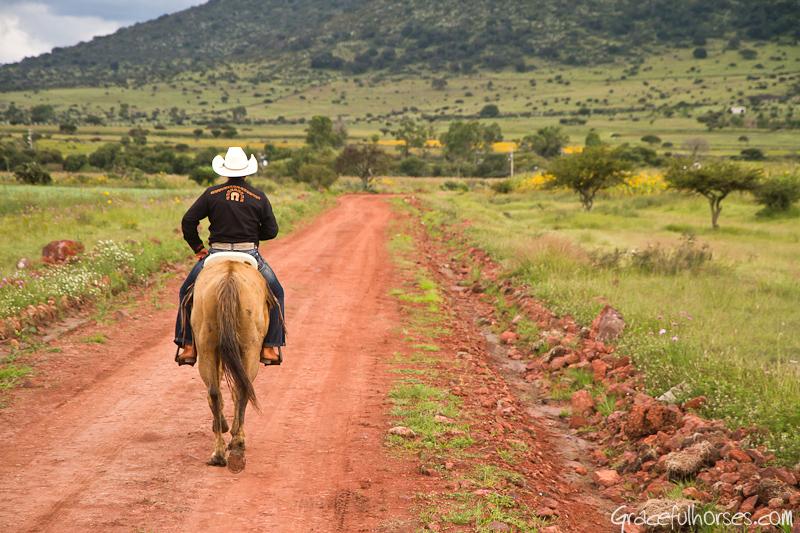 Hoseback riding Mexico