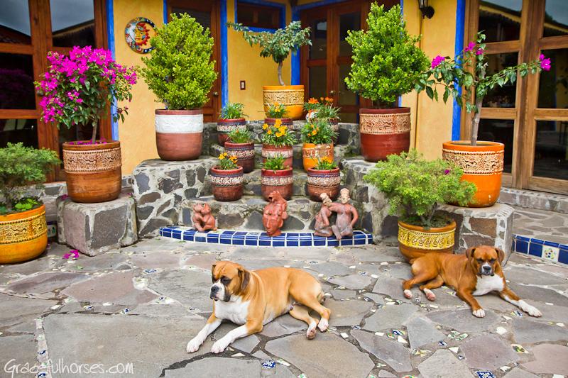 Rancho Las Cascadas courtyard