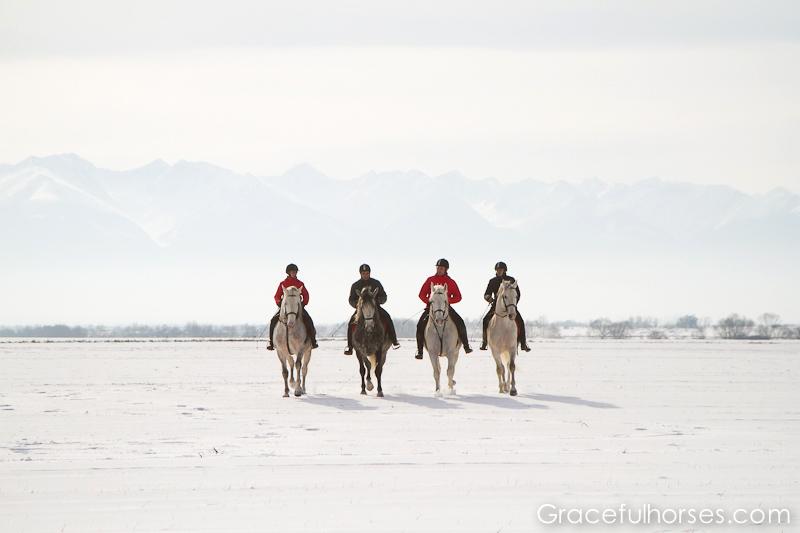 Riders at Sambata de Jos stud farm
