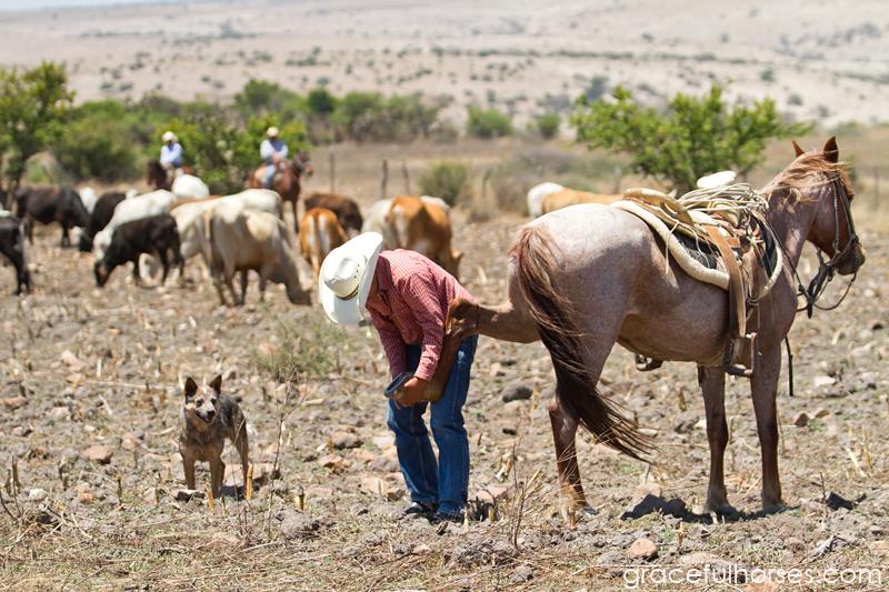 Rancho Xotolar Mexico