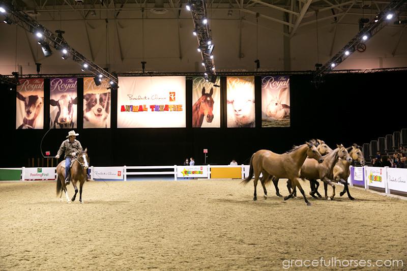 Guy McLean and horses at the Royal Winter Fair