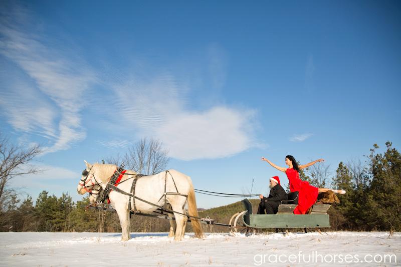 Creative equine photography