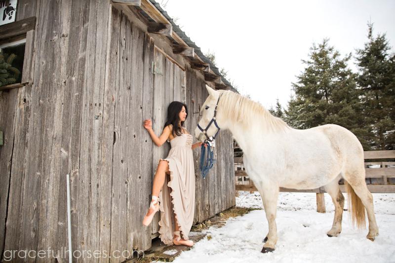 Equine photographer Toronto