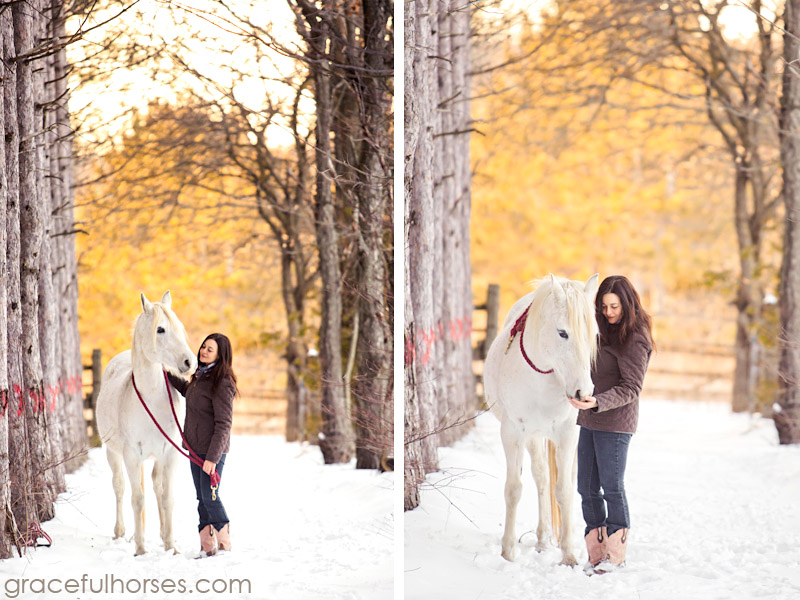 Equine photographer in Ontario