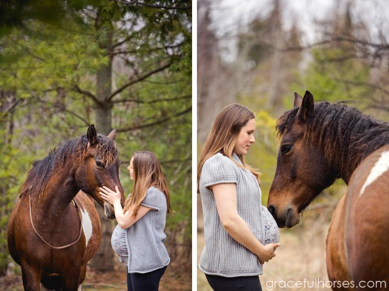 Equine maternity photographer