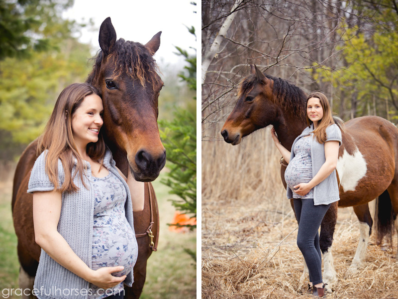 Maternity photos with horses