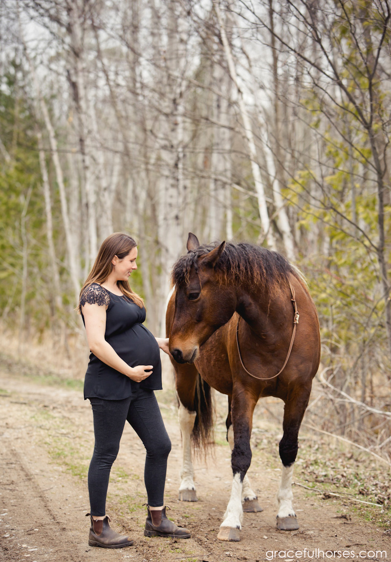 Maternity photography with horses