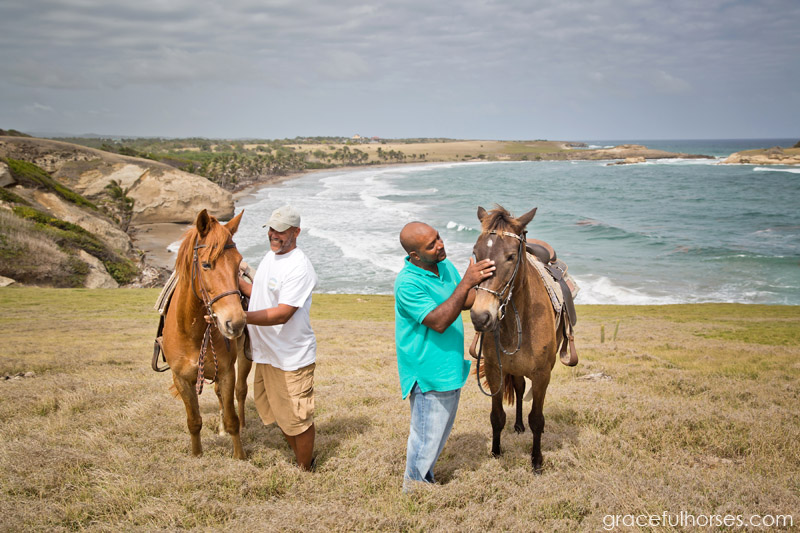 atlantic-shores-stables-st-lucia