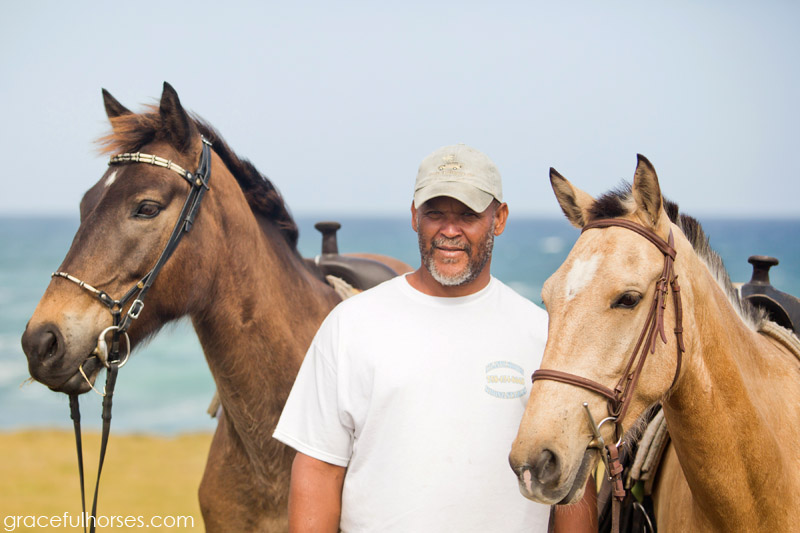 Horses at Atlantic Shores Stables