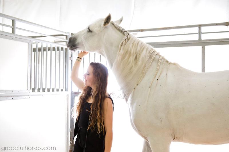 Cavalia braided horse