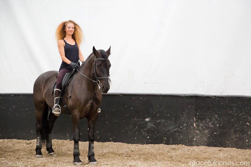 Cavalia horse warm up