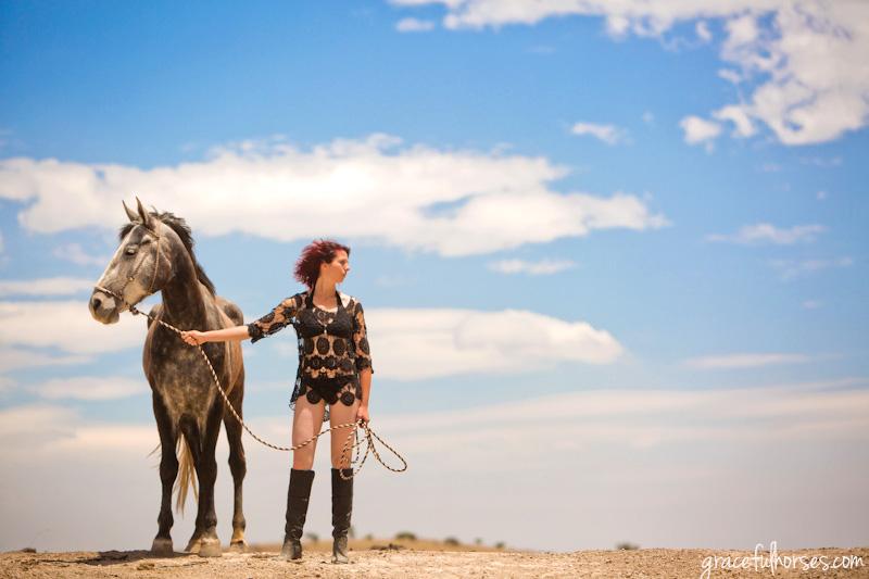 Creative equine portraits