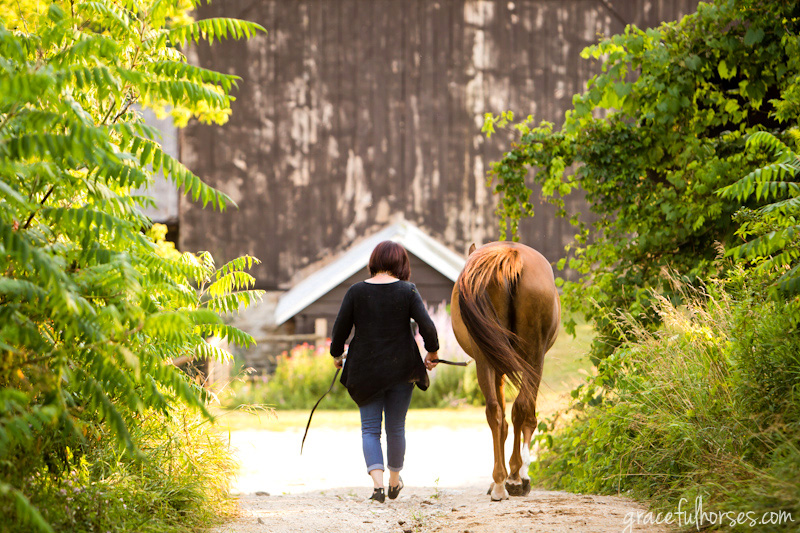 Horse and owner photo session