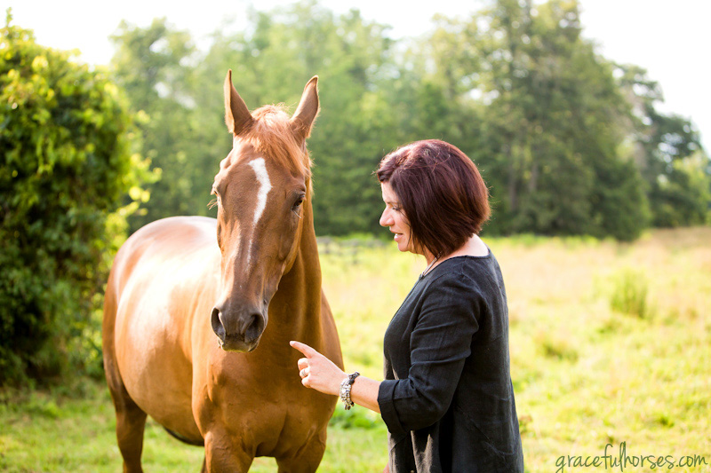 Horse and owner photos