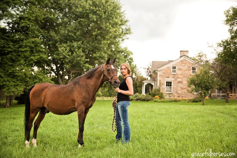 Arab horse photographer