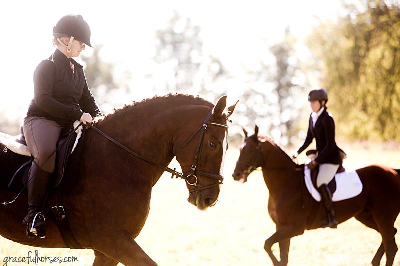 Equine photographer Ontario