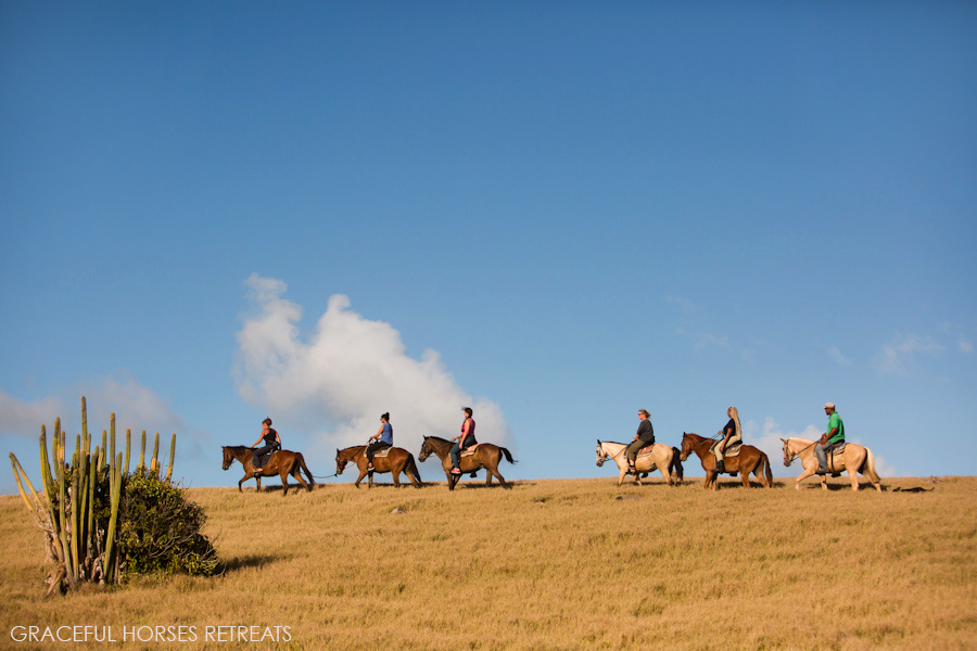 Horse retreats in St Lucia