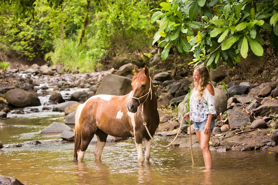 Establo San Rafael horses