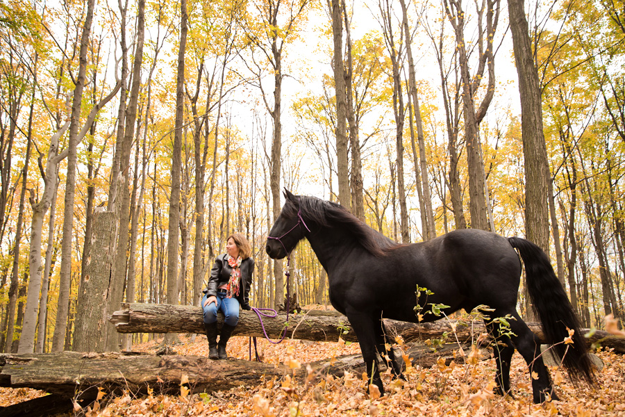 Friesian horse and owner