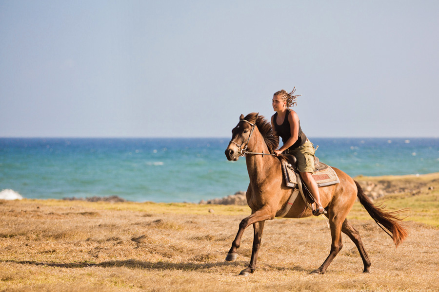 Horse and rider St Lucia