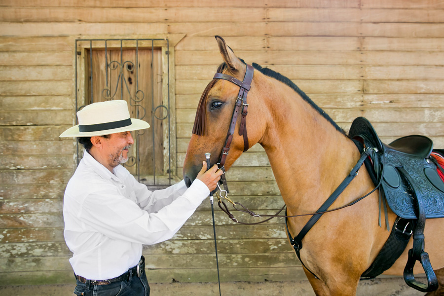 Spanish horse and trainer