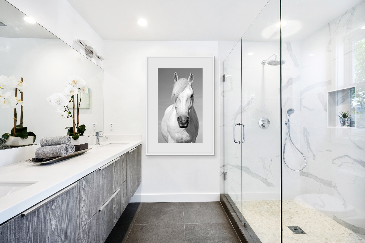 Equine wall art by Graceful Horses