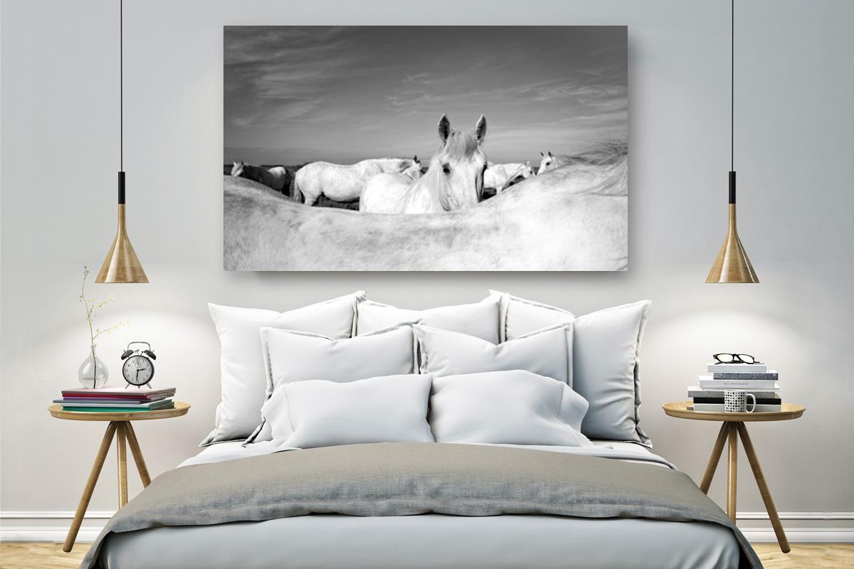 Camargue horses wall art
