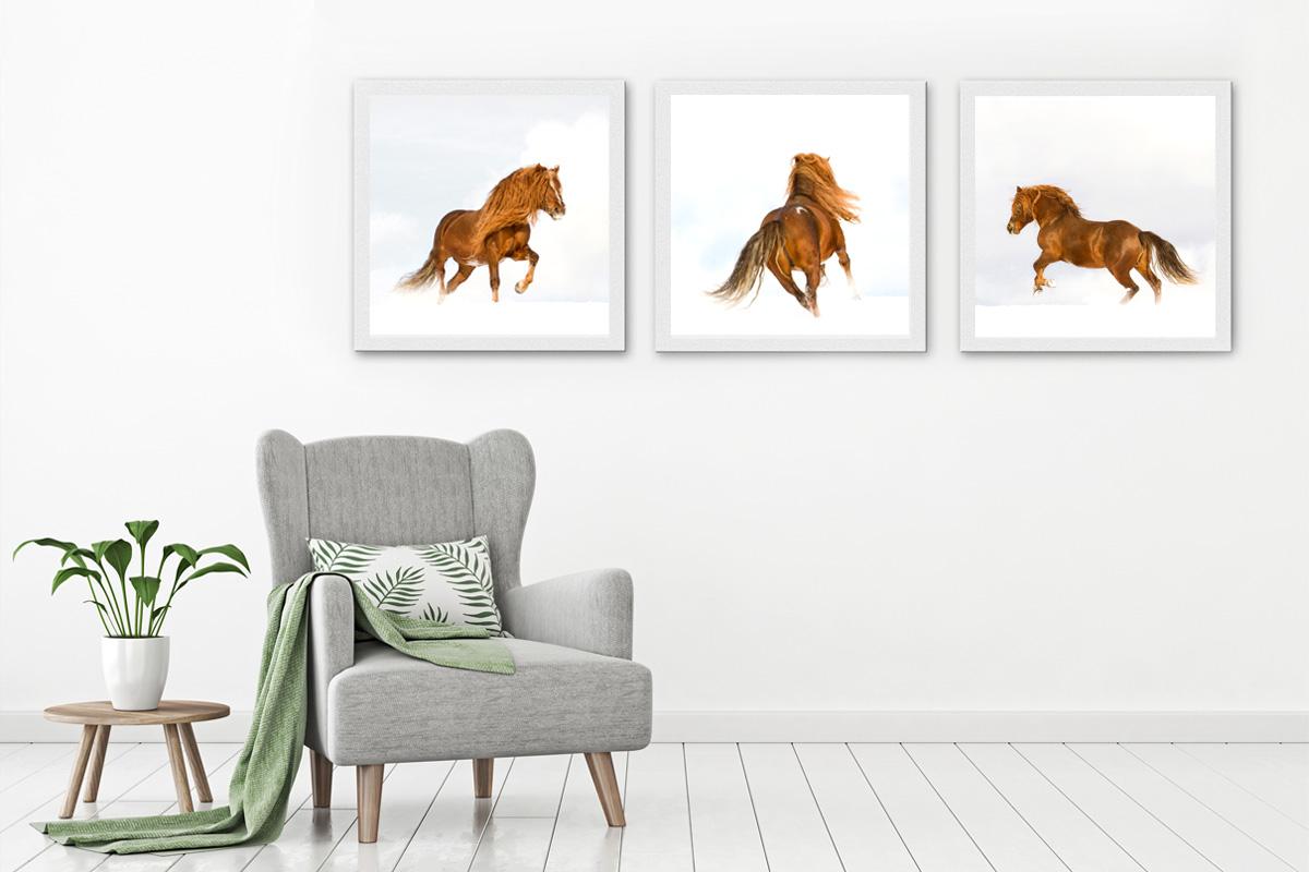 Equine art for interiors