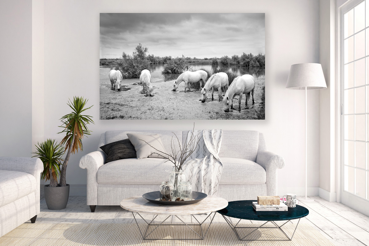 Equine wall art